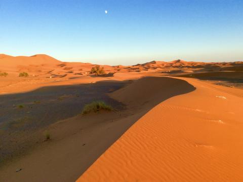 Saharadünen bei Erg chebbi