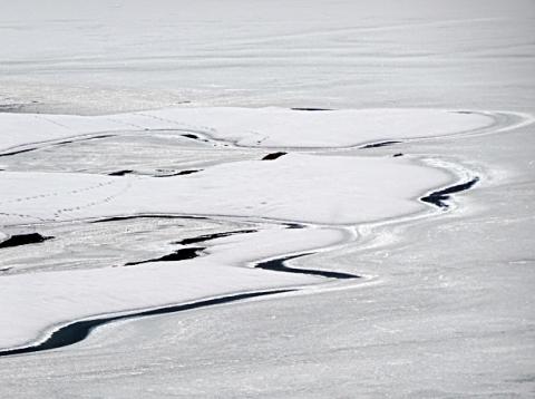 Zugefrorenes Ufer vom Mittersee bei Ruhpolding