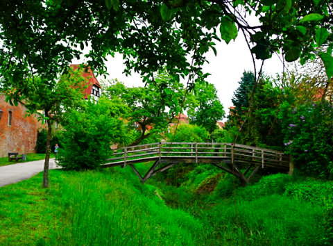 Nebenarm der Wörnitz an der Insel Ried Donauwörth