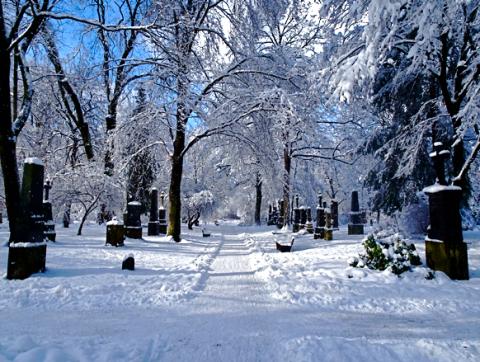 Alter Nordfriedhof München