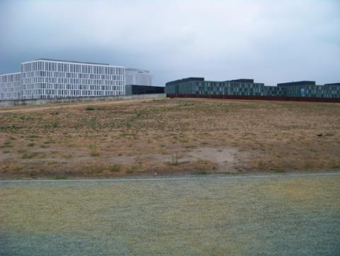 Spreebogenpark in Berlin Sommer 2018