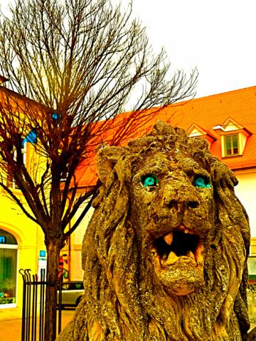 Erlangen Löwe
