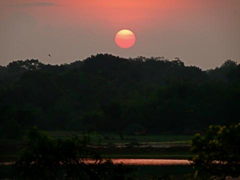 Vorm Yalla Nationalpark bei Sonnenaufgang