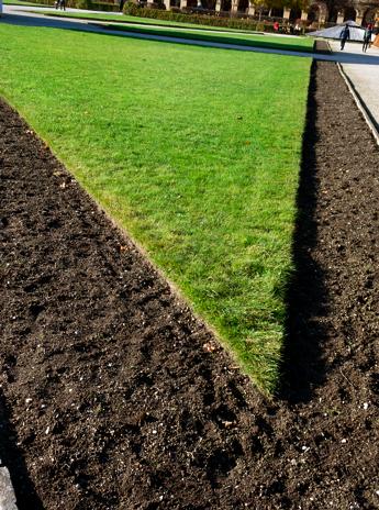 Winterbepflanzung im Münchner Schlossgarten