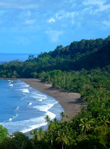 Playa Ricon Drake Bay