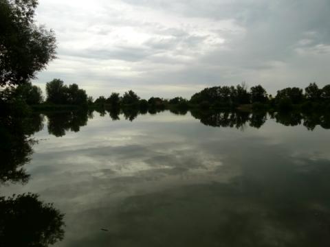 Altmühlsee Vogelinsel