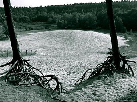 Sandgrube Jagen 86 Grundewald