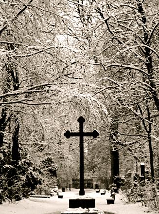 Alter Nordfriedhof Zentral