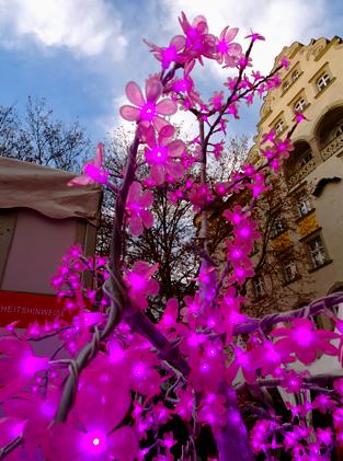 Pink Christmas - Weihnachtsmarkt im Glockenbachviertel