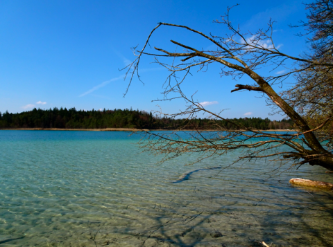 Am Ufer des Fohnsees FKK-Strand / Osterseen