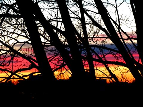 Sonnenuntergang über München vom Luitpoldpark