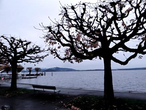 Am Zuger See
