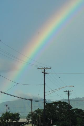 Regenbogen Kauai