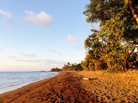 Rincon Playa